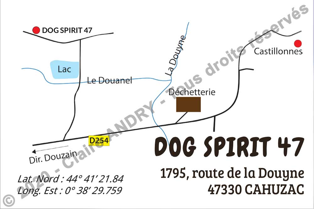 Carte commerciale Dog Spirit 47 verso