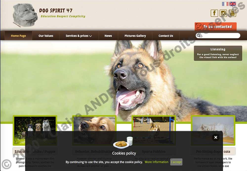 Page d'accueil version EN