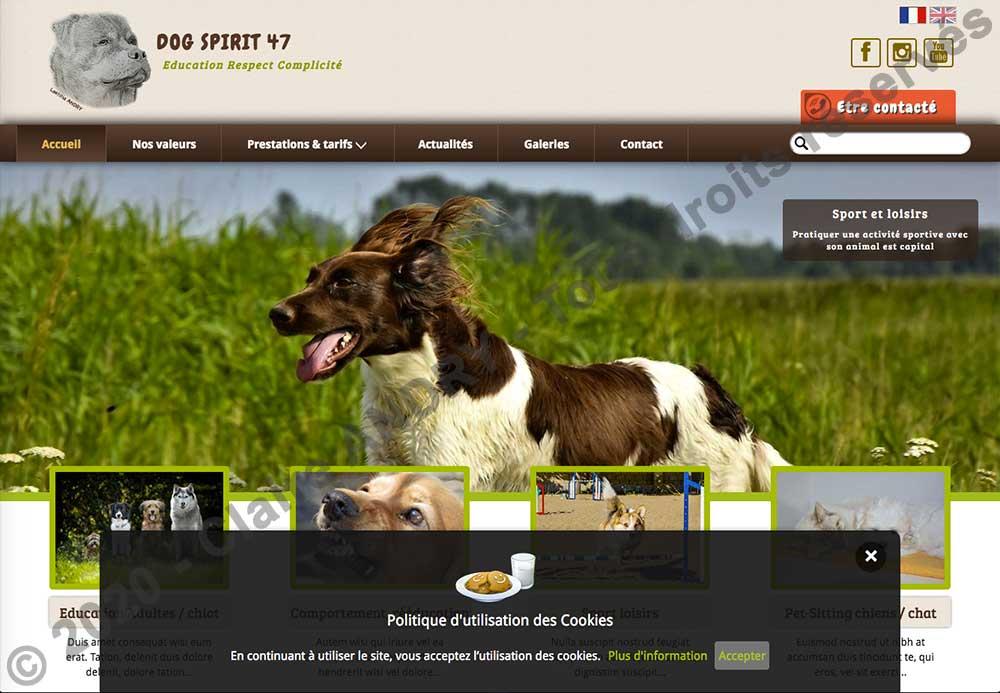 Page d'accueil version FR