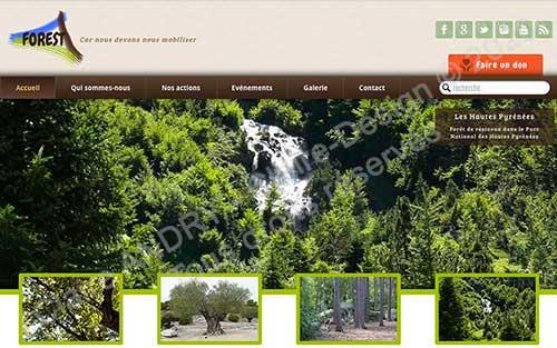 Projet Web WordPress Forest
